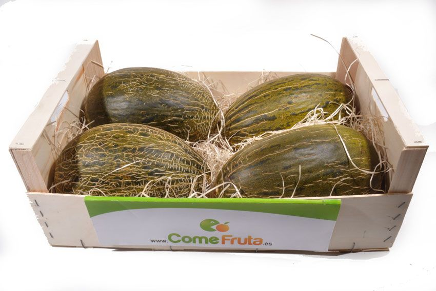 Caja melón piel de sapo