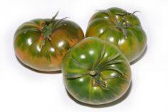 las 5 propiedades del tomate
