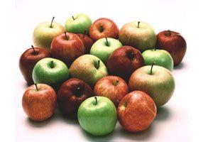 manzanas varias 293x200 jpg