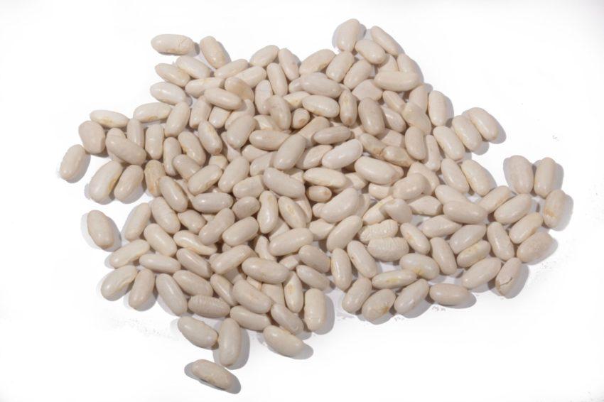 Judias blancas granel