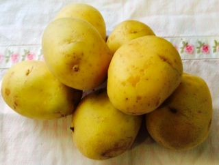 freir patata