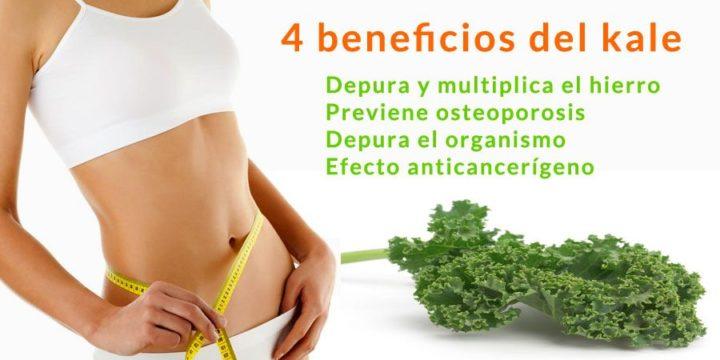 4 beneficios kale