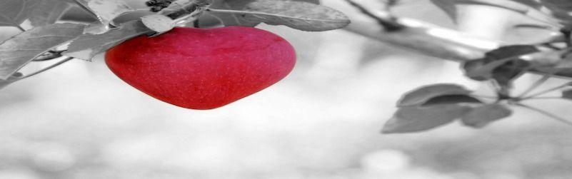 5 frutas contra la hipertensión
