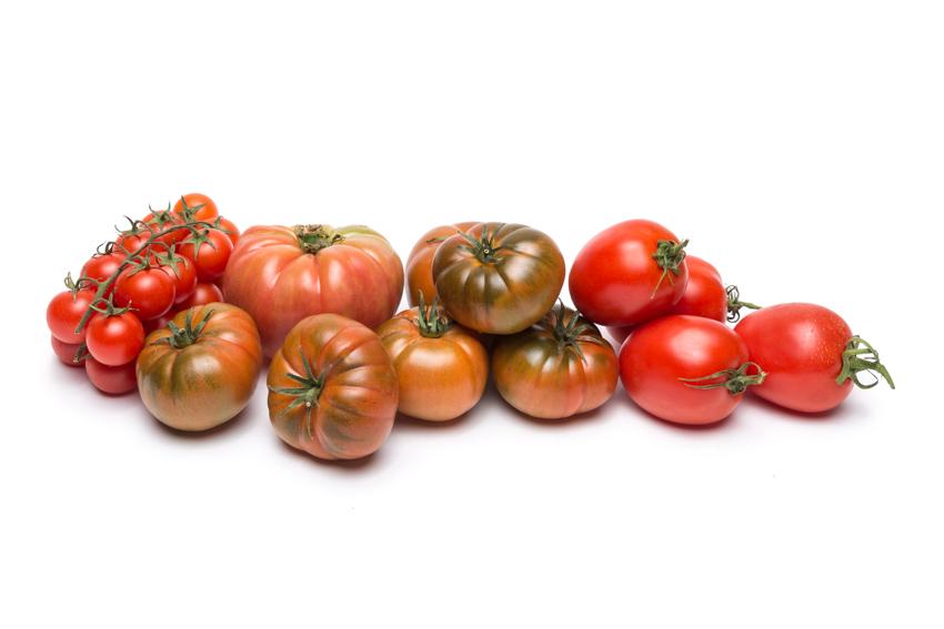 Mix tomates temporada 02