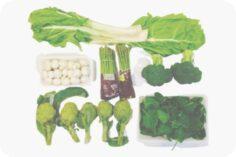 Acelgas, espinacas y manojos