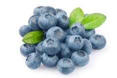 arándano azul fresco