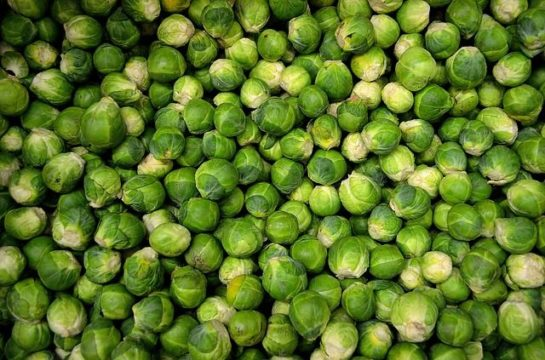 brussels sprouts 22009 640