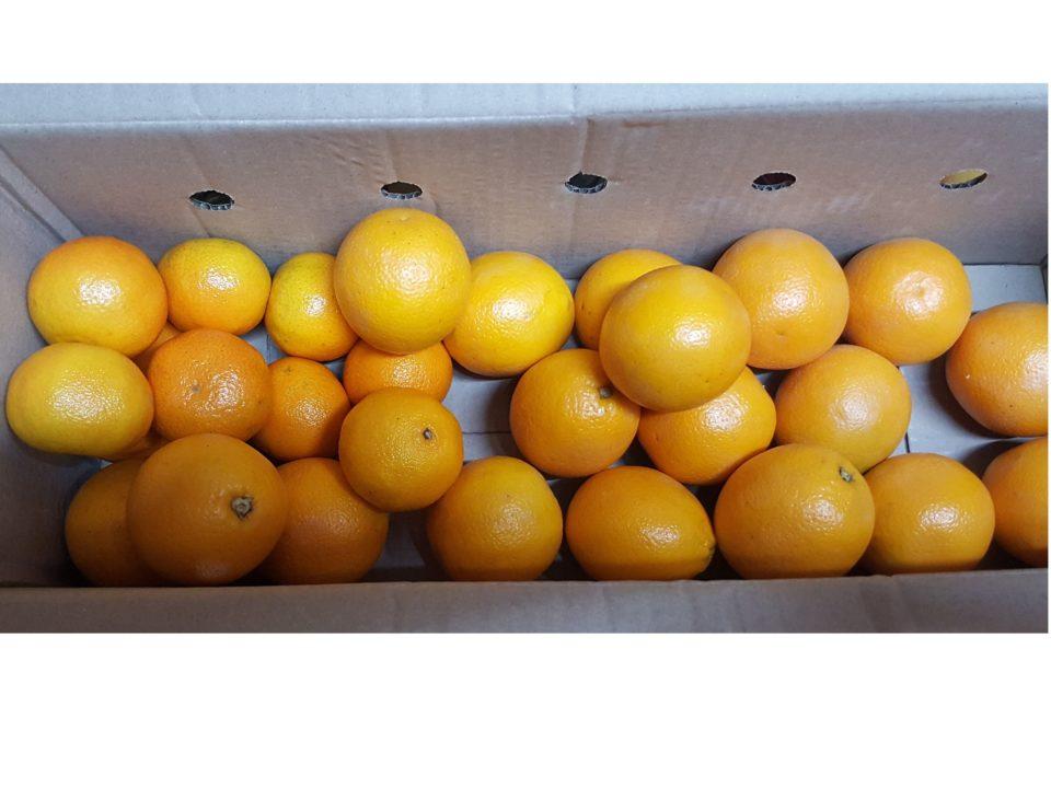 caja mandarina y naranja