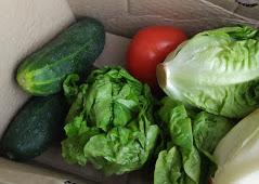 caja verdura