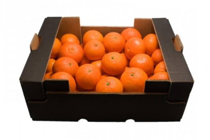 Mandarinas para zumo