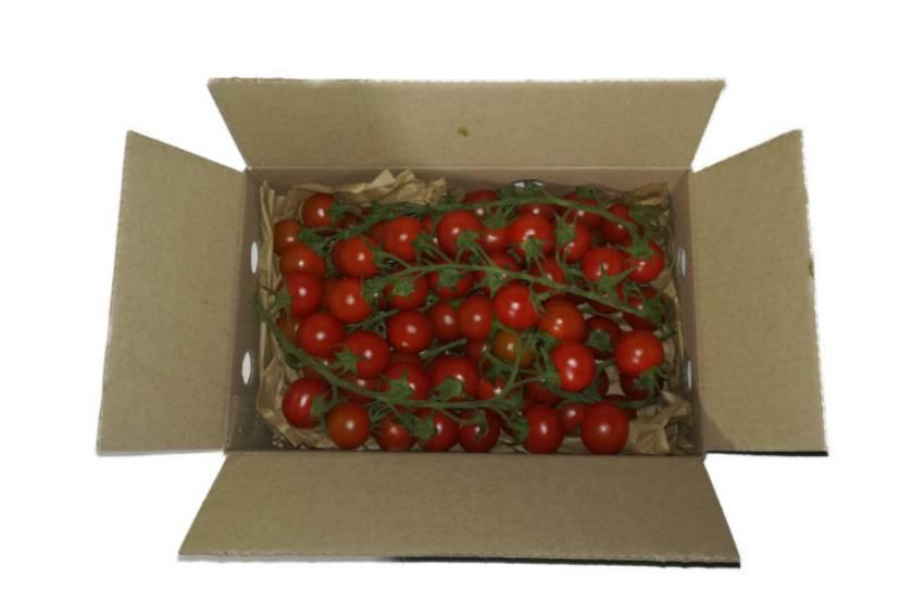 caja tomate cherry rama