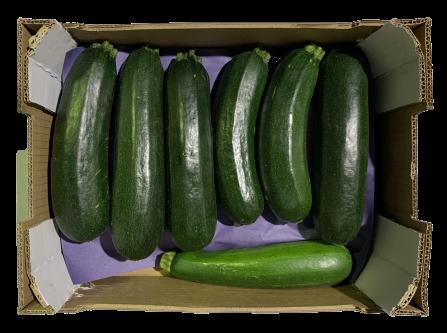 venta fruta mayorista calabacín