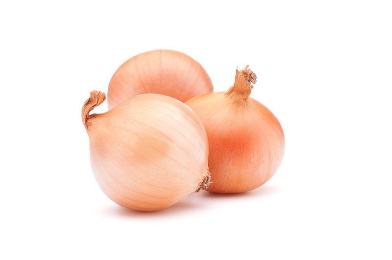 cebolla 1