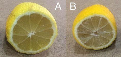 como-elegir-limones-cortado