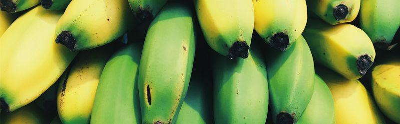 conservar plátanos maduros y verdes