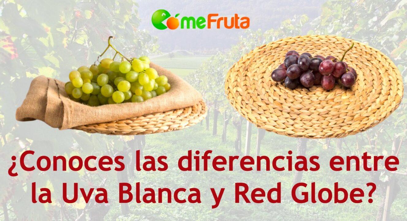 diferencias entre uva blanca y negra 1