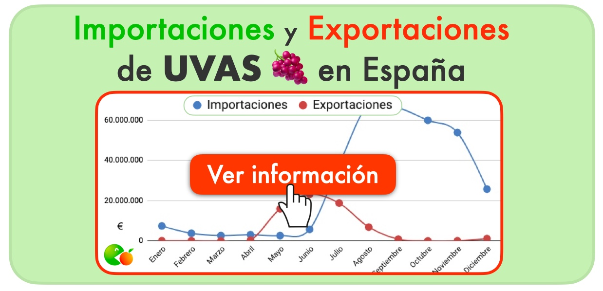 importación exportación UVA