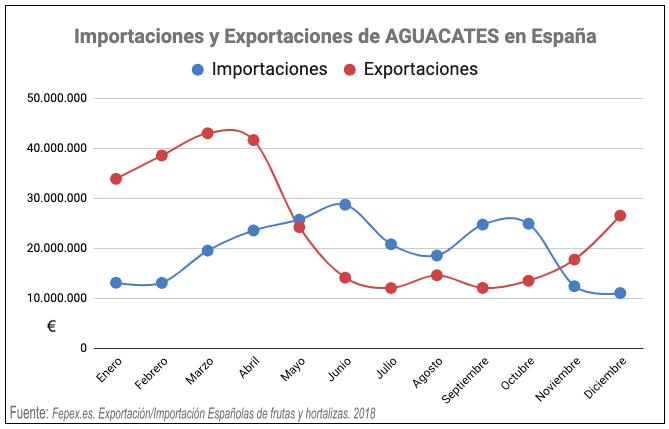 importación y exportación aguacate españa