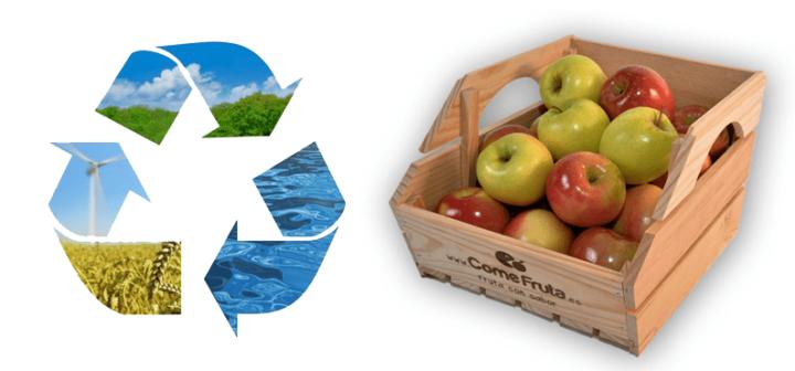 fotografia acción saludable empresa medio ambiente