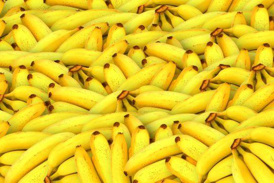 marcas fruta online