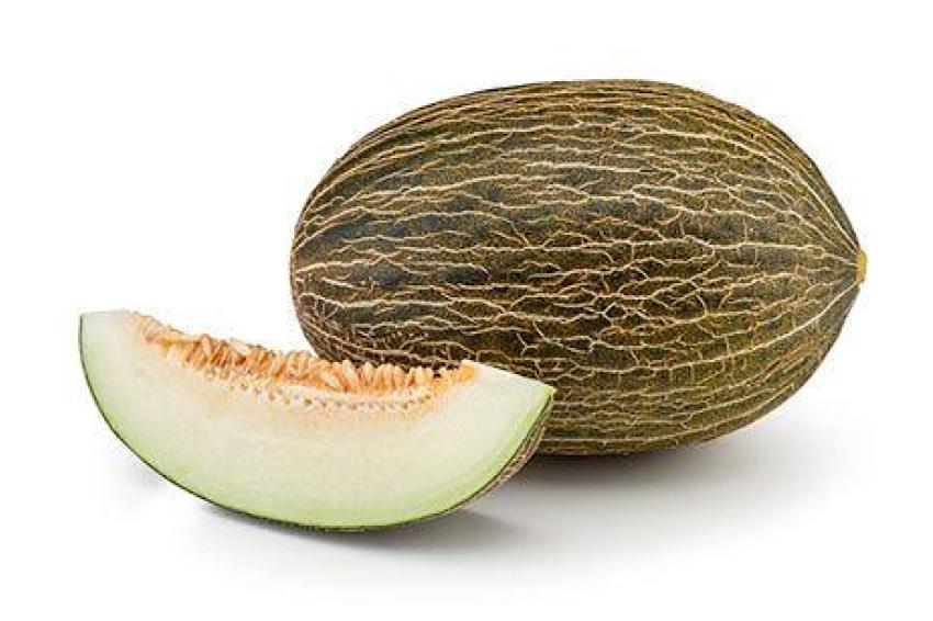 melon de piel de sapo