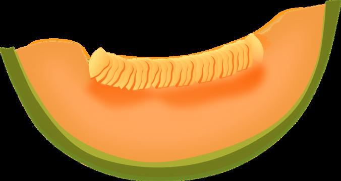melón sana merienda para los niños