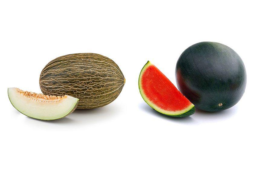 melon y sandia