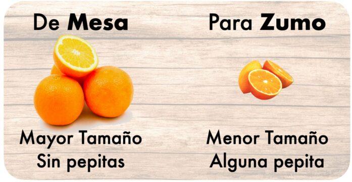 naranja de zumo vs naranja mesa