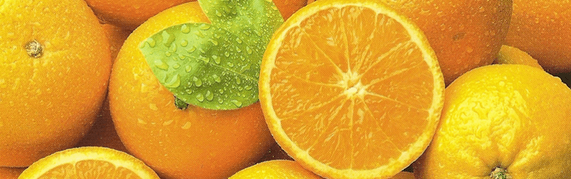 Conservar naranjas