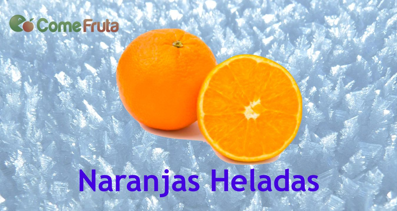 preparar naranjas heladas