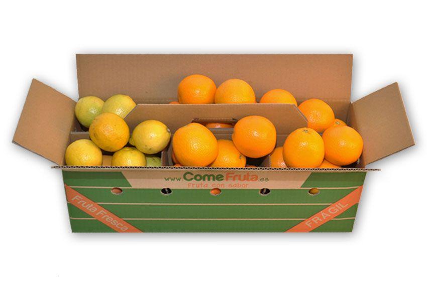 naranjas limones valencia