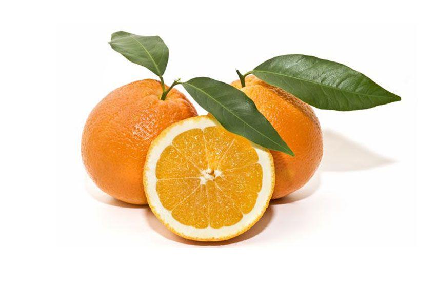 naranjas de Valencia directas del productor