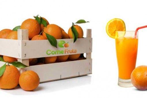 qué fruta está de temporada en diciembre, naranjas, mandarinas