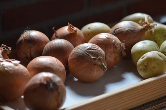 conservar cebollas