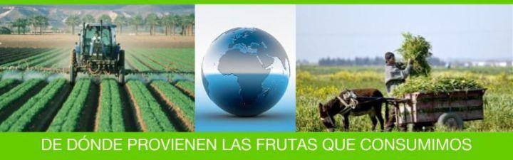 origen frutas y verduras