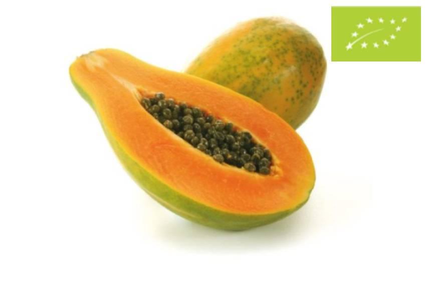papaya tropical eco
