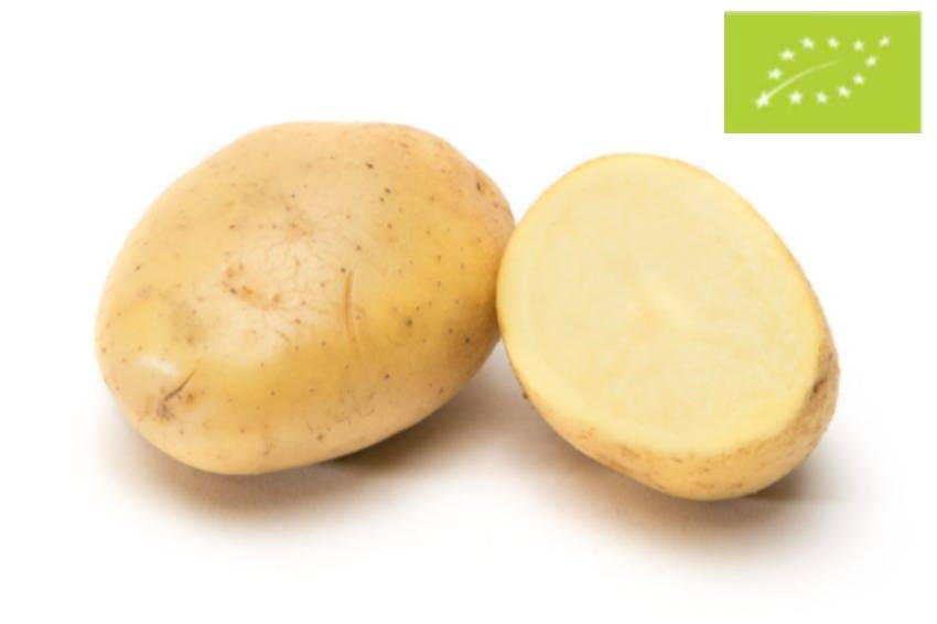 Patata eco