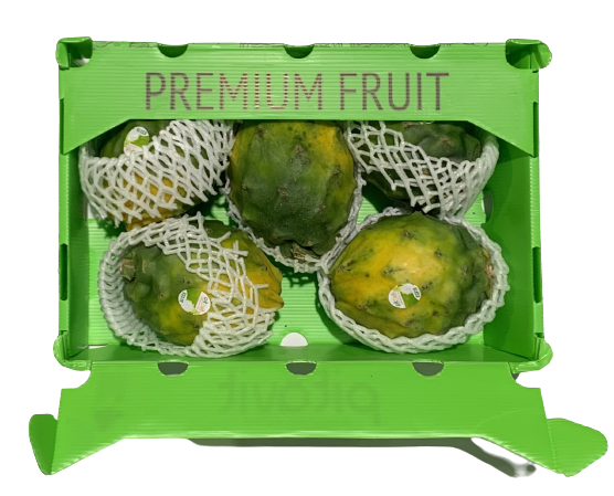 mayorista venta fruta