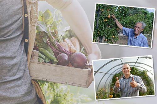 productores de fruta y verdura