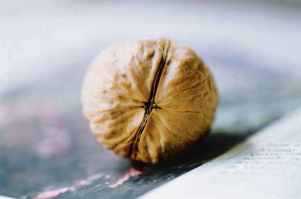 Las 6 sorprendentes propiedades de las nueces