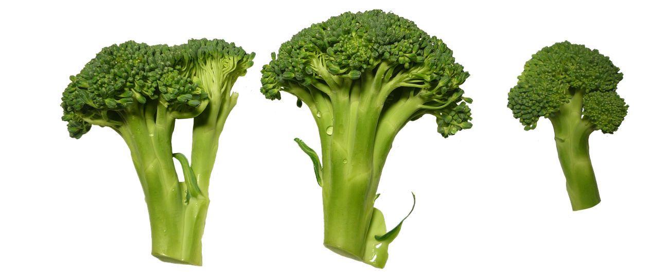 6 propiedades del brocoli
