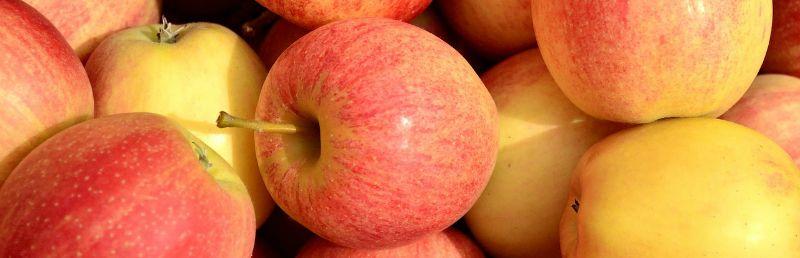 propiedades de la manzana 2