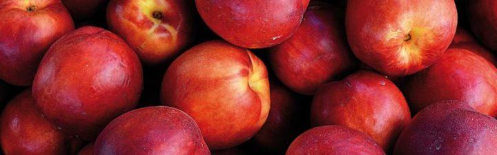 propiedades de las nectarinas