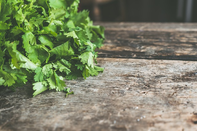Una de las principales propiedades del cilantro fresco