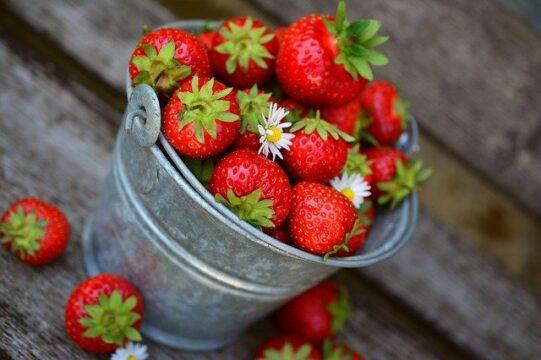 fresas y otras frutas para mujeres saludables