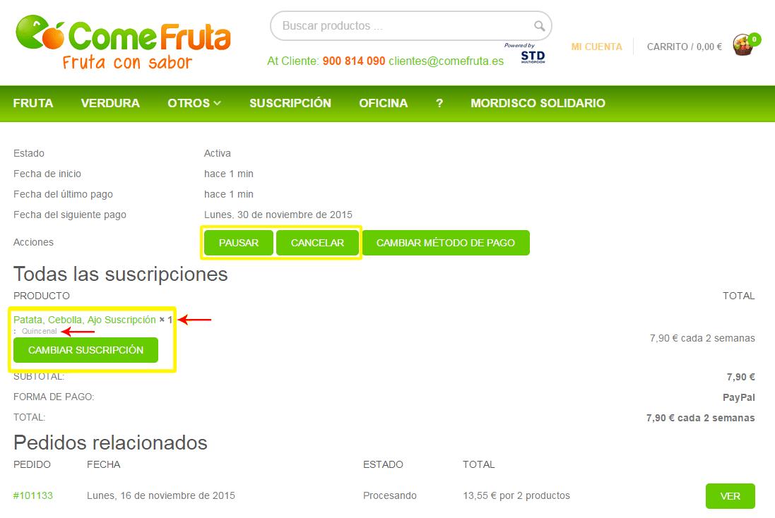 """Resumen detallado de una suscripción en """"Mi Cuenta"""""""