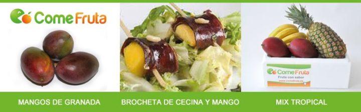 temporada de mangos en España