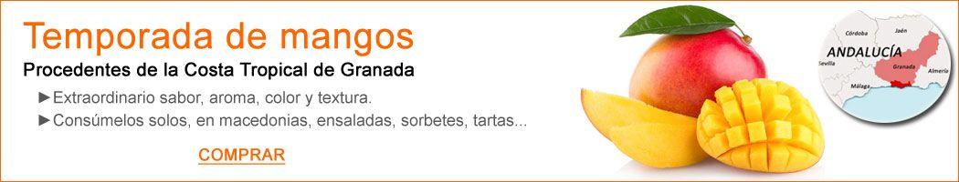 Es temporada de mangos procedentes de la Costa Tropical de Granada