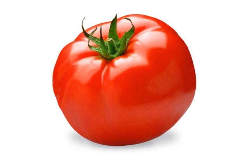 tomate para freir