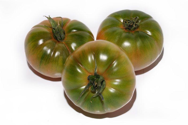 variedades de tomates con sabor: tigre